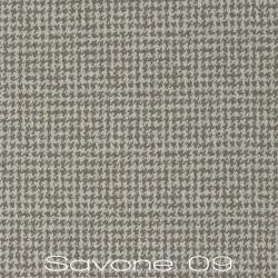 Savone-09